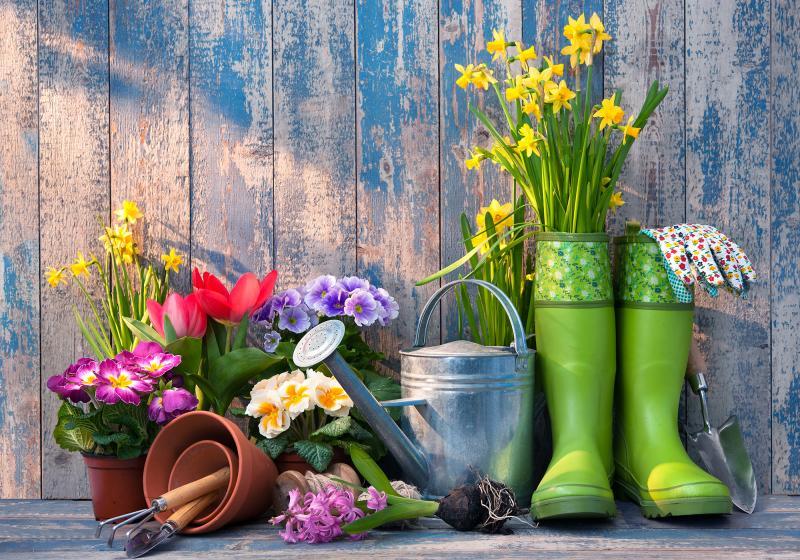 Tipy na jarní práci na zahradě
