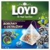 Loyd Ovocný čaj 20 ks, vybrané druhy